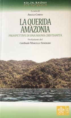 LA QUERIDA AMAZONIA. PROSPETTIVE DI UNA NUOVA CRISTIANITÀ